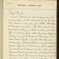 """""""Still the battle rages"""": Dublin mother's WWI diary goes online"""