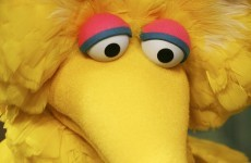 Internet rallies to defence of Big Bird but Romney insists he loves him