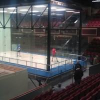 A novice's guide to the Handball World Championships: Knowing your dump shots from your crotch serves