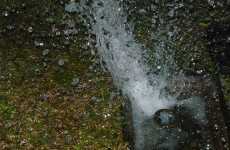 Poll: Has your local authority adequately informed you about water restrictions?