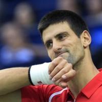 Djokovic brushes Berdych aside in Shanghai