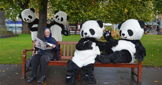 GALLERY: Edinburgh is invaded by giant pandas... kind of