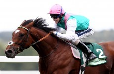 Frankel's farewell: Legendary horse set to go out on winning note