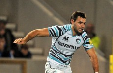Former Leinster full-back Morris showing his claws at Leicester Tigers