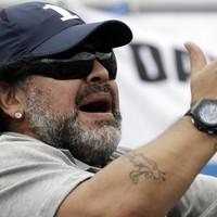 Diego Maradona, 51, stunned by partner's pregnancy