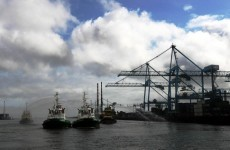 Irish exports see record results for 2010
