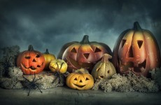 Forget about the kids, where can adults go to get scared this Halloween?