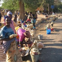 Women pushed further into poverty as food prices continue to rise - Oxfam