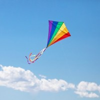 Budget 'kite flying' fuelling negativity for Irish businesses – IBEC