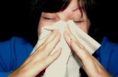 Swine flu cases double in first week of 2011