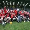 2012 Leinster Club SHC team-by-team guide