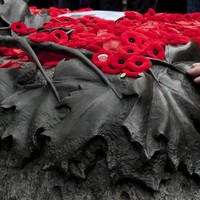 Poll: should we mark Poppy Day?
