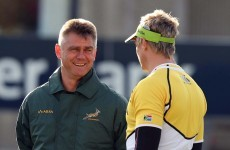 Northern lights: Meyer 'concerned' by South African exodus to Ireland