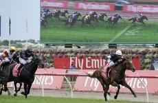 Melbourne Cup: Green Moon rises down under