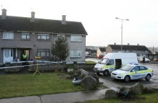 Eight in custody over Limerick double murder