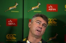 November internationals: Springboks wary of pumped-up England