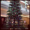 Look at this huge Christmas tree made of Lego