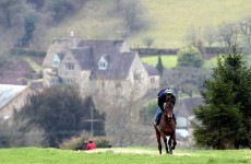 Injury forces Imperial Commander out of Betfair
