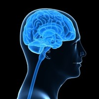 Global traumatic brain injury rates could be six times higher than thought - study