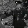 Video: Tackling Irish Christmas tree thefts in 1962