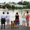 Brisbane begins clean-up after €15bn flooding