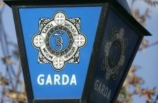 Man arrested, firearm seized, in Kildare