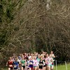 Sweeney and Hutchinson claim national cross country honours