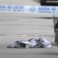 Man arrested over murder of Real IRA member Alan Ryan