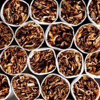 351,000 contraband cigarettes seized at Dublin Port