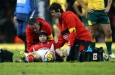 Wales full-back Halfpenny discharged from hospital