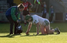 Shefflin set to undergo tests on injured ankle