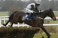 Dunguib out of Irish Champion Hurdle at Leopardstown