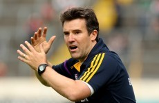 Former Wexford boss Ryan joins Kildare coaching set-up