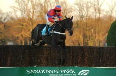 Sprinter Sacre obliterates rivals in Tingle Creek Chase