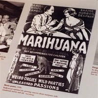 POT: A history of marijuana