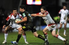 Heineken Cup: Team of the Week