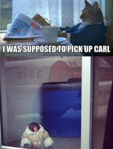 Is this what happened to the Ikea monkey (aka Carl?)
