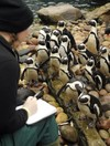 Any escapees? Annual zoo census throws up challenge
