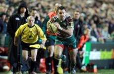 Green pastures: New contract for Morris as Leicester go top