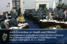 Oireachtas told: 'Ireland already allows abortion of unviable pregnancies'
