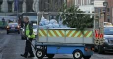 Sad Christmas tree Pic of the Day