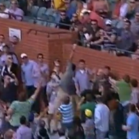 VIDEO: Amazing one-handed cricket catch by Aussie carrying food and milk