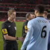 '62 quid' linesman axed from FA Cup tie following Lescott fan advice