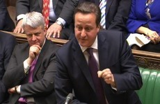 David Cameron call for investigation into horse meat