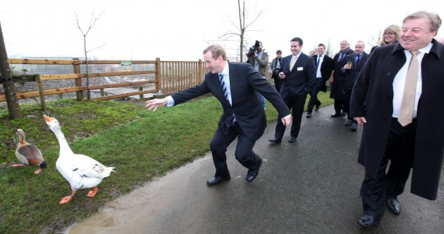 Enda Kenny Chasing Geese While People Laugh Pic of the Day