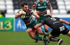 Irish winger Morris could decide Heineken Cup fate of Leinster and Munster