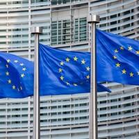 Poll: Should Ireland hold a referendum on EU membership?