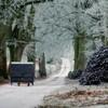 Irish folk furniture film wins top award at Sundance festival