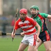 Here's your 2013 Fitzgibbon Cup Guide: Part 1