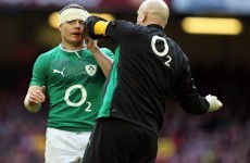 VIDEO: This pass from Brian O'Driscoll to Simon Zebo was the best George Hook 'has ever seen'